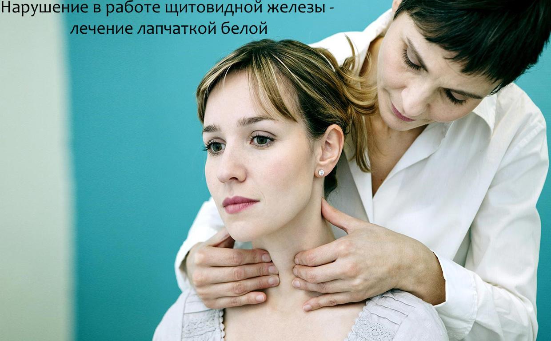 Нарушение в работе щитовидной железы - лечение лапчаткой белой