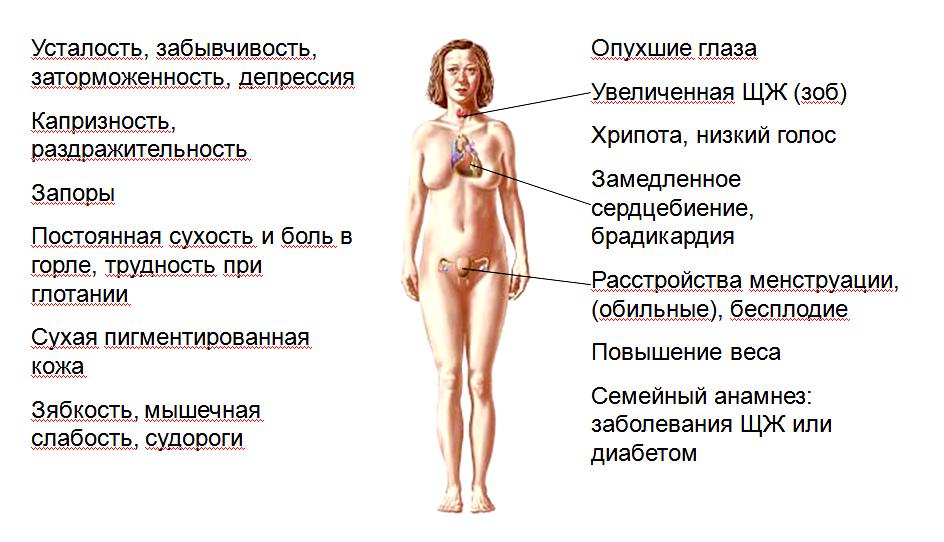 Щитовидная железа комплексная лабораторная диагностика